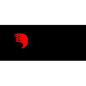 ПРОСТЫНЯ ОДНОРАЗОВАЯ 80*210 СМ (100 ШТ/УП.),спанбел sergio professional
